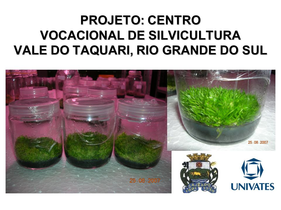 PROJETO: CENTRO VOCACIONAL DE SILVICULTURA VALE DO TAQUARI, RIO GRANDE DO SUL
