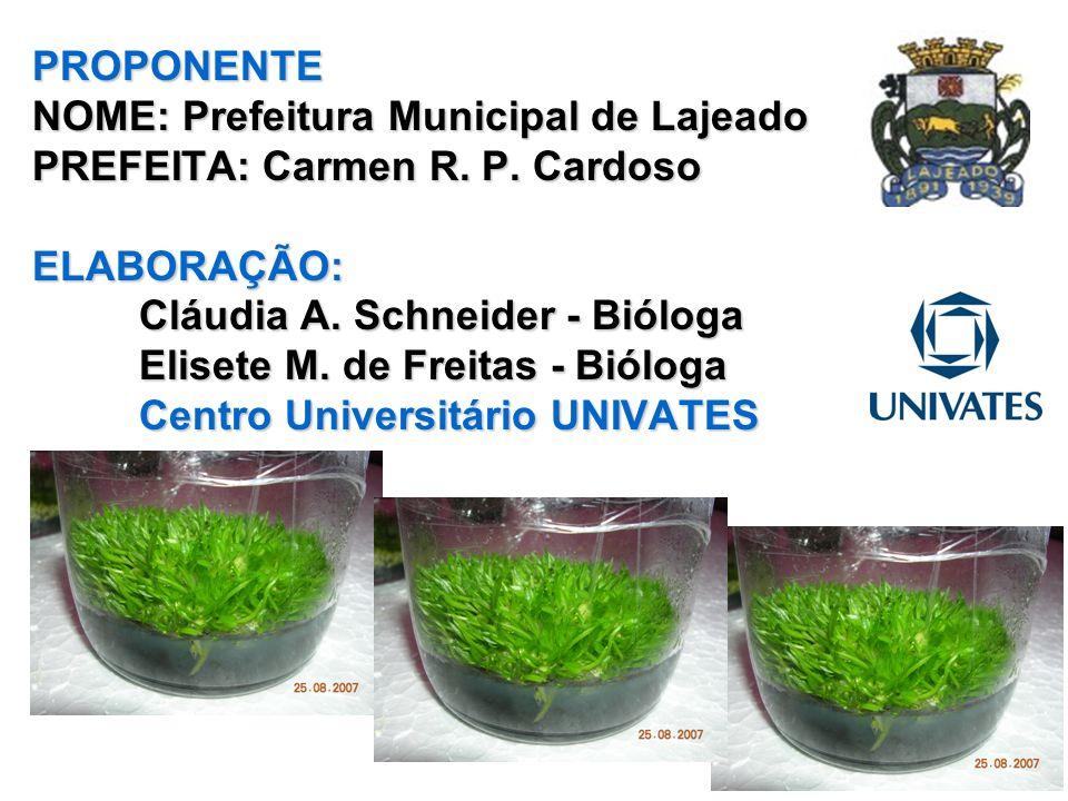 PROPONENTE NOME: Prefeitura Municipal de Lajeado PREFEITA: Carmen R. P