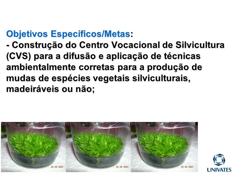 Objetivos Específicos/Metas: - Construção do Centro Vocacional de Silvicultura (CVS) para a difusão e aplicação de técnicas ambientalmente corretas para a produção de mudas de espécies vegetais silviculturais, madeiráveis ou não;