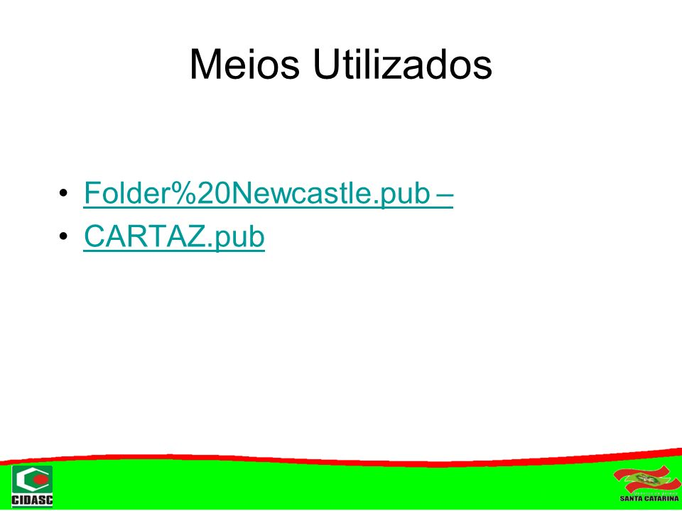 Meios Utilizados Folder%20Newcastle.pub – CARTAZ.pub