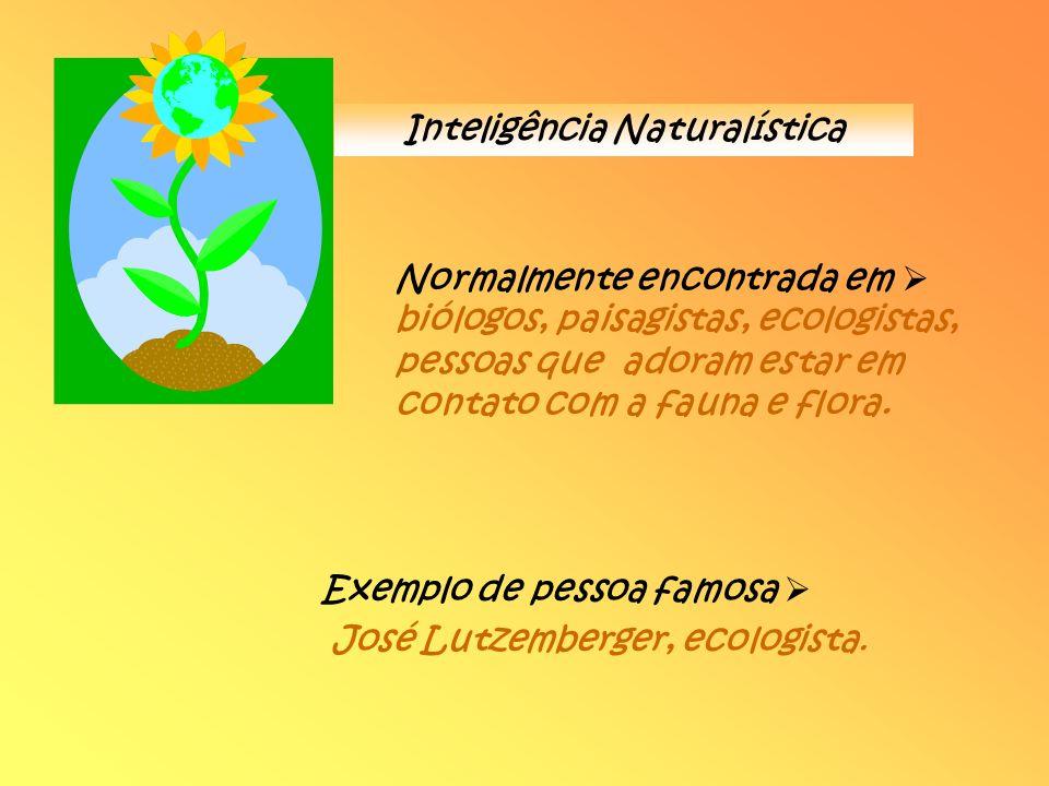 Inteligência Naturalística