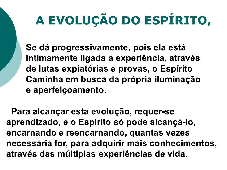 A EVOLUÇÃO DO ESPÍRITO,