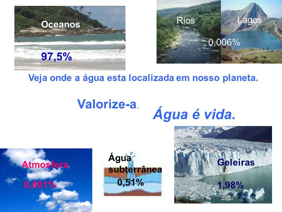 Água é vida. Valorize-a. 97,5% Rios Lagos Oceanos 0,006%