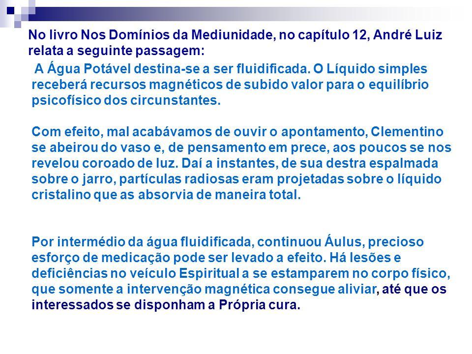 No livro Nos Domínios da Mediunidade, no capítulo 12, André Luiz relata a seguinte passagem: