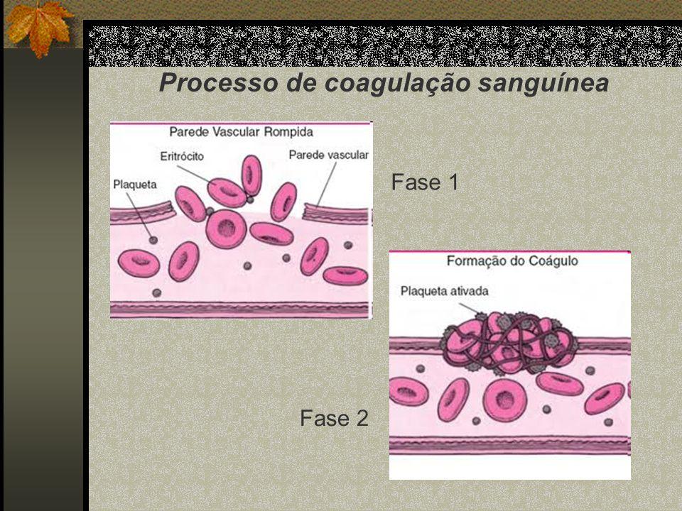 Processo de coagulação sanguínea