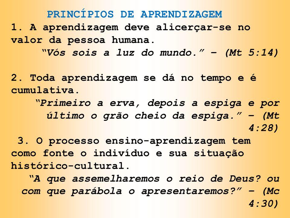 PRINCÍPIOS DE APRENDIZAGEM