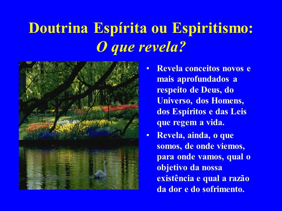 Doutrina Espírita ou Espiritismo: O que revela