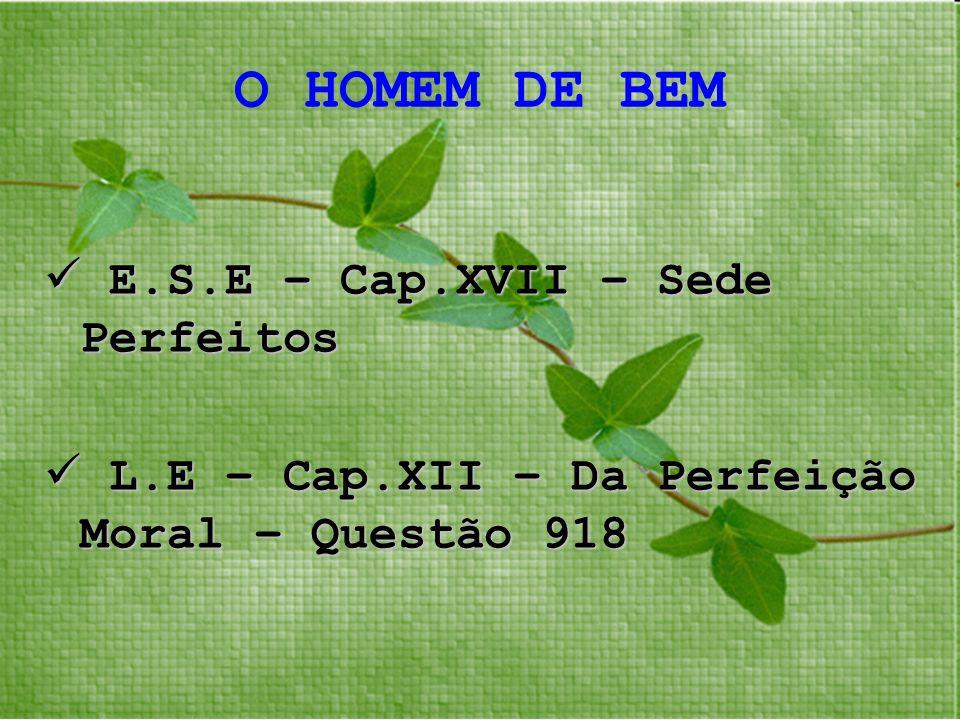 O HOMEM DE BEM E.S.E – Cap.XVII – Sede Perfeitos