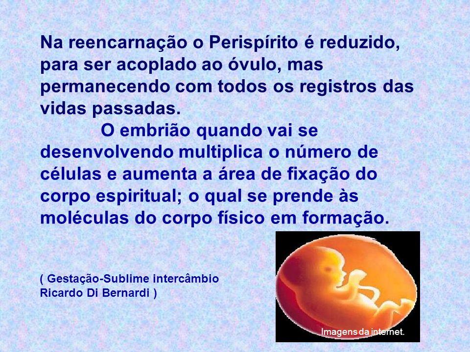 Na reencarnação o Perispírito é reduzido, para ser acoplado ao óvulo, mas permanecendo com todos os registros das vidas passadas.