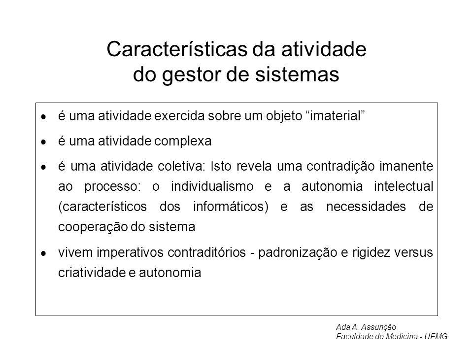 Características da atividade do gestor de sistemas