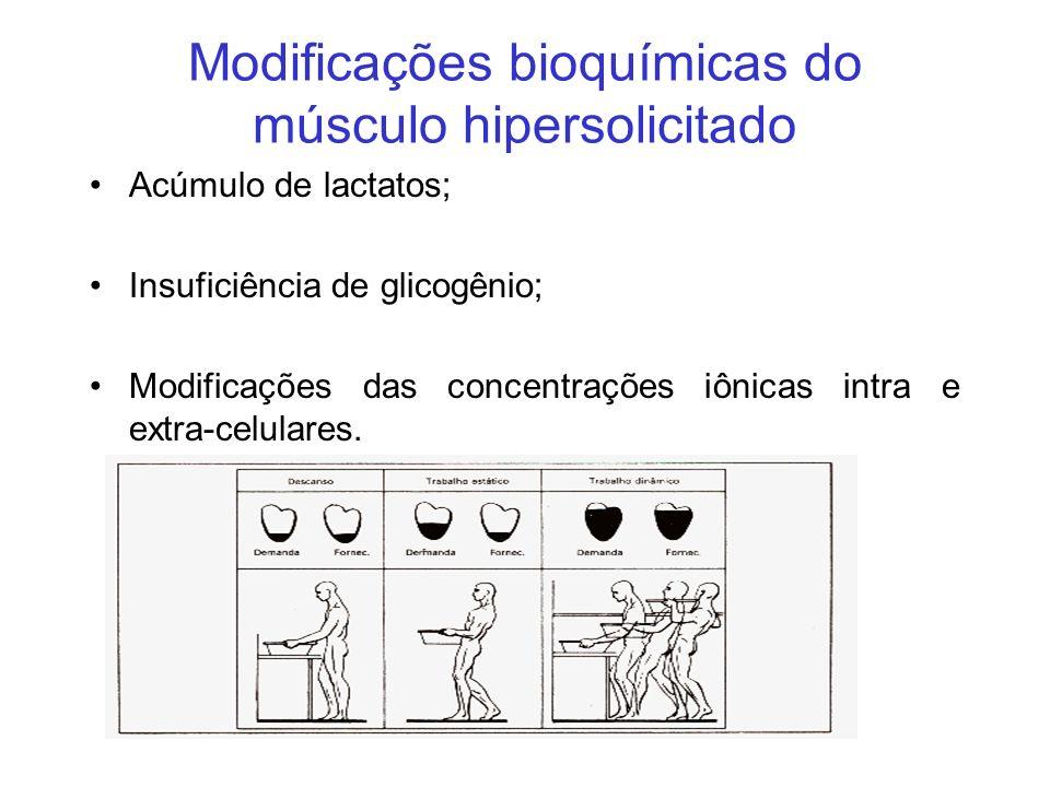 Modificações bioquímicas do músculo hipersolicitado