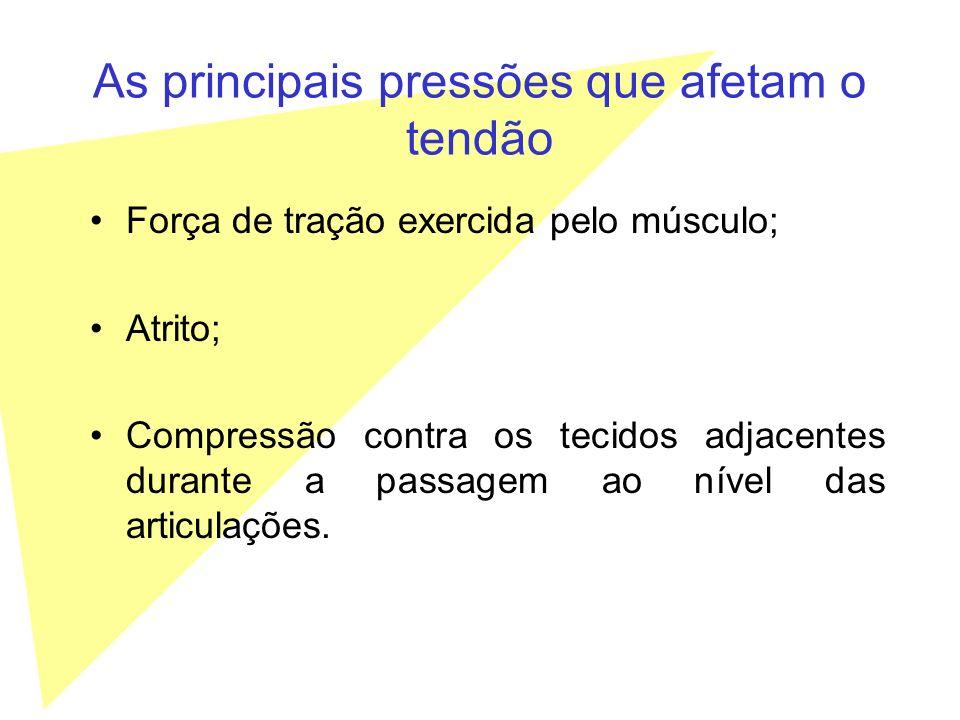 As principais pressões que afetam o tendão