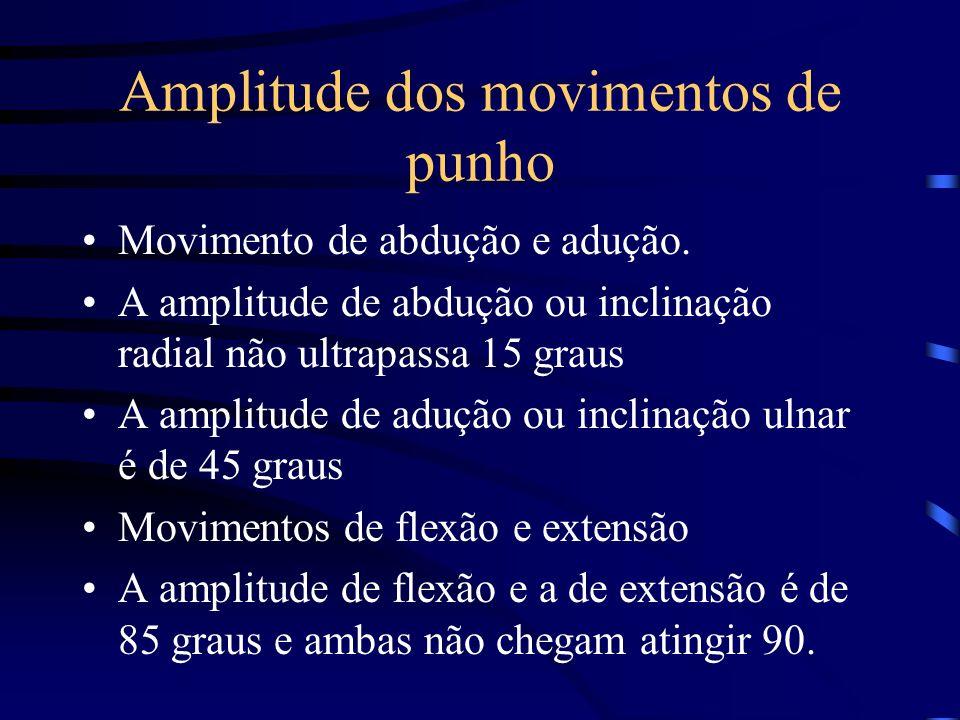 Amplitude dos movimentos de punho