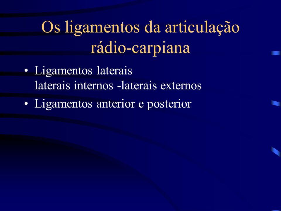 Os ligamentos da articulação rádio-carpiana