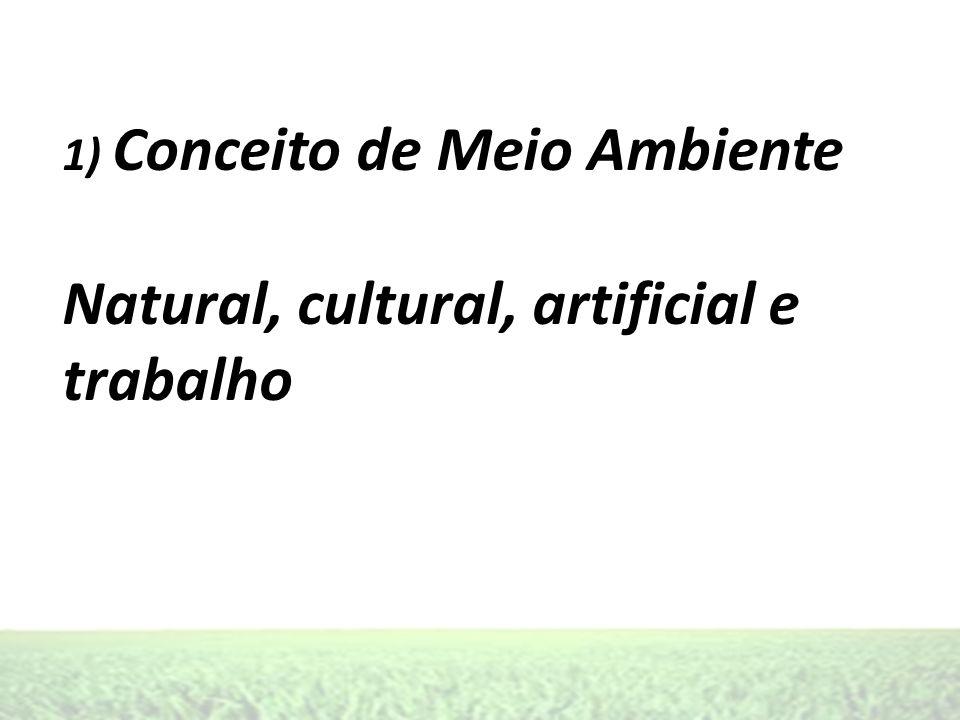Natural, cultural, artificial e trabalho