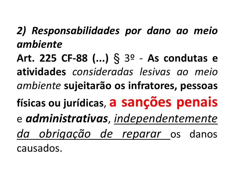 2) Responsabilidades por dano ao meio ambiente