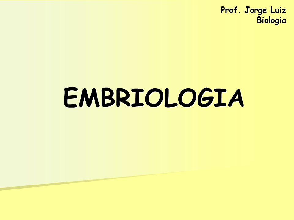 Prof. Jorge Luiz Biologia EMBRIOLOGIA
