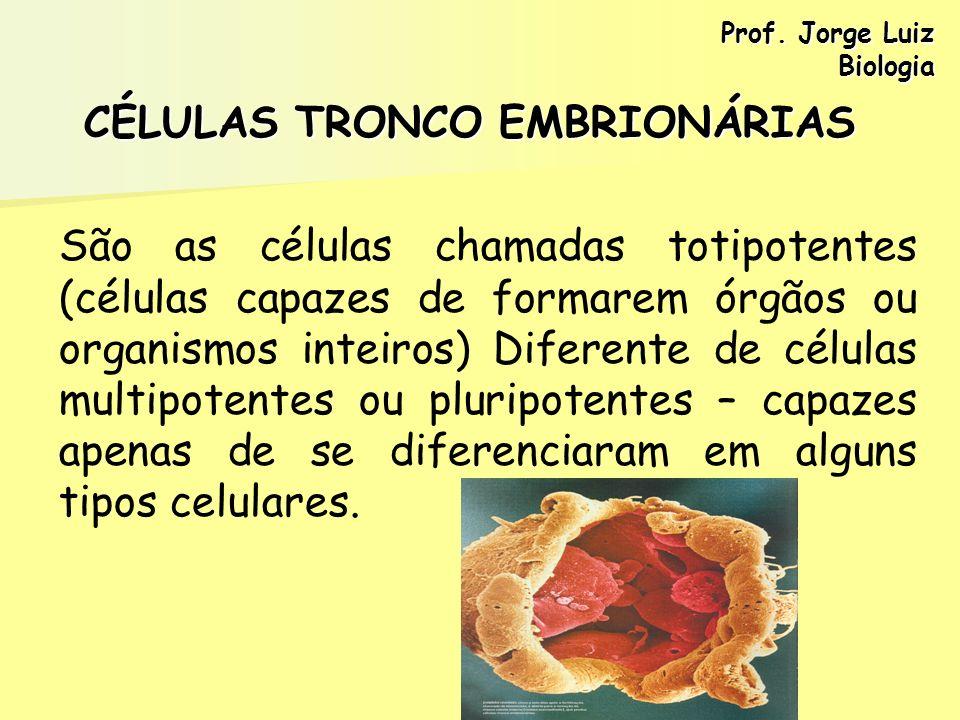 CÉLULAS TRONCO EMBRIONÁRIAS