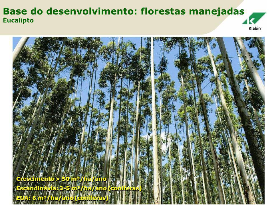 Base do desenvolvimento: florestas manejadas Eucalipto