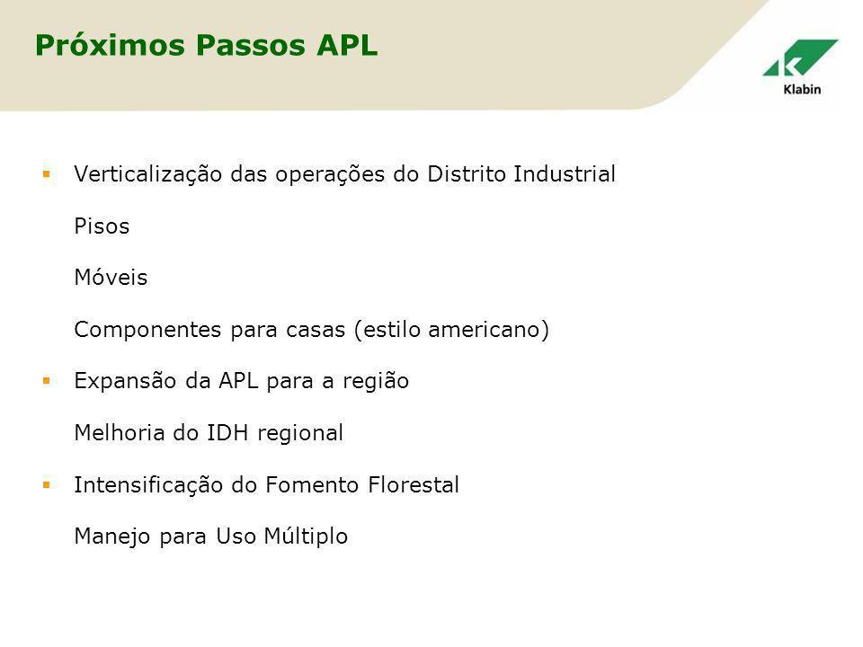 Próximos Passos APL Verticalização das operações do Distrito Industrial. Pisos. Móveis. Componentes para casas (estilo americano)