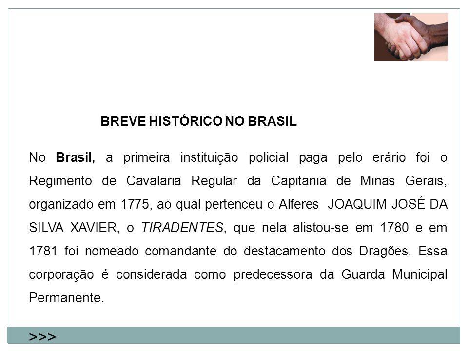 >>> BREVE HISTÓRICO NO BRASIL