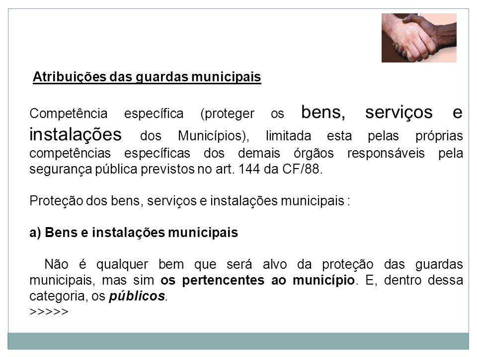 Proteção dos bens, serviços e instalações municipais :