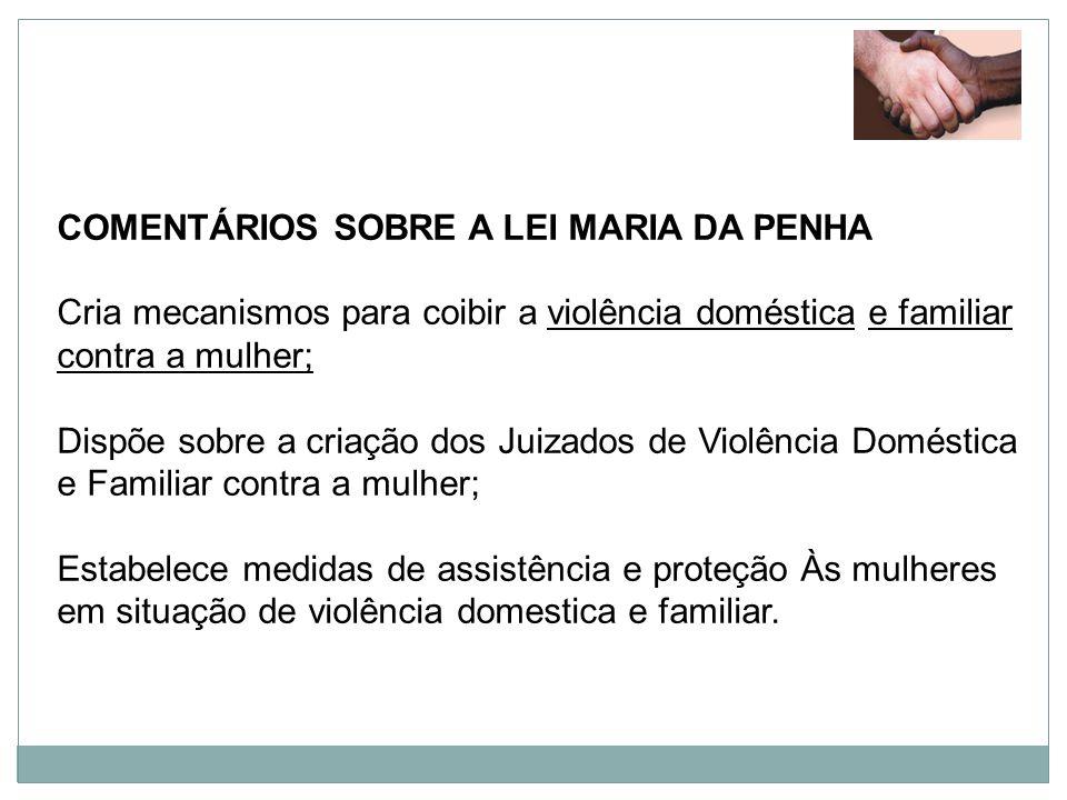 COMENTÁRIOS SOBRE A LEI MARIA DA PENHA