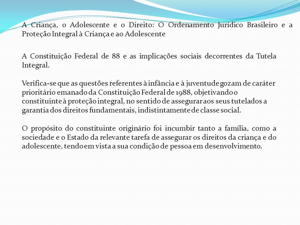 A Criança, o Adolescente e o Direito: O Ordenamento Jurídico Brasileiro e a Proteção Integral à Criança e ao Adolescente