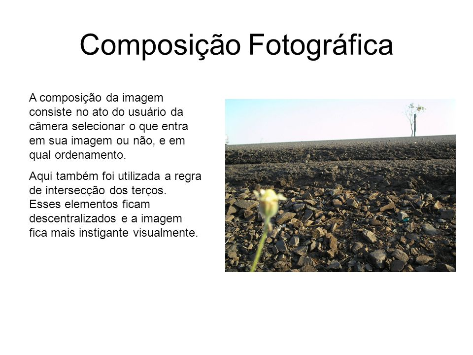 Composição Fotográfica