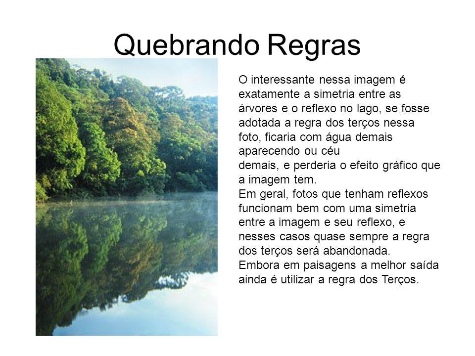 Quebrando Regras O interessante nessa imagem é exatamente a simetria entre as árvores e o reflexo no lago, se fosse adotada a regra dos terços nessa.