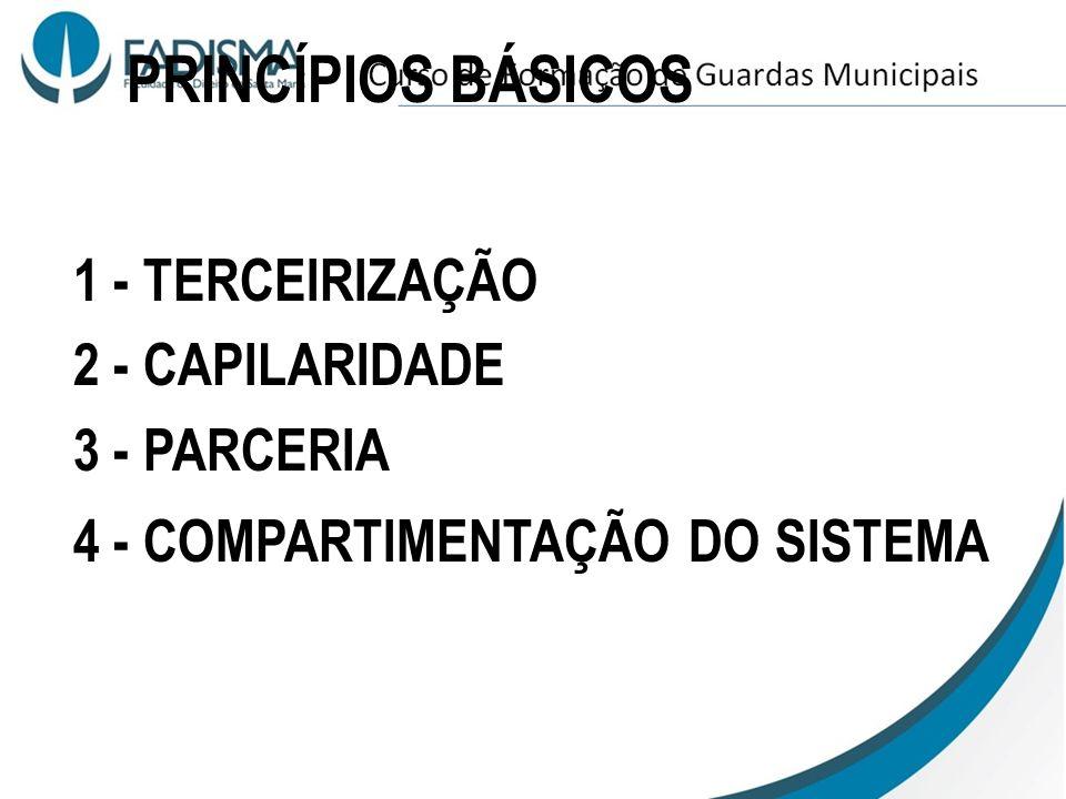 PRINCÍPIOS BÁSICOS 1 - TERCEIRIZAÇÃO 2 - CAPILARIDADE 3 - PARCERIA
