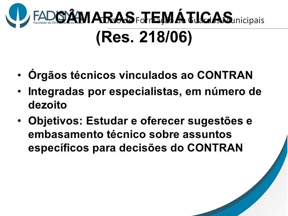 CÂMARAS TEMÁTICAS (Res. 218/06)