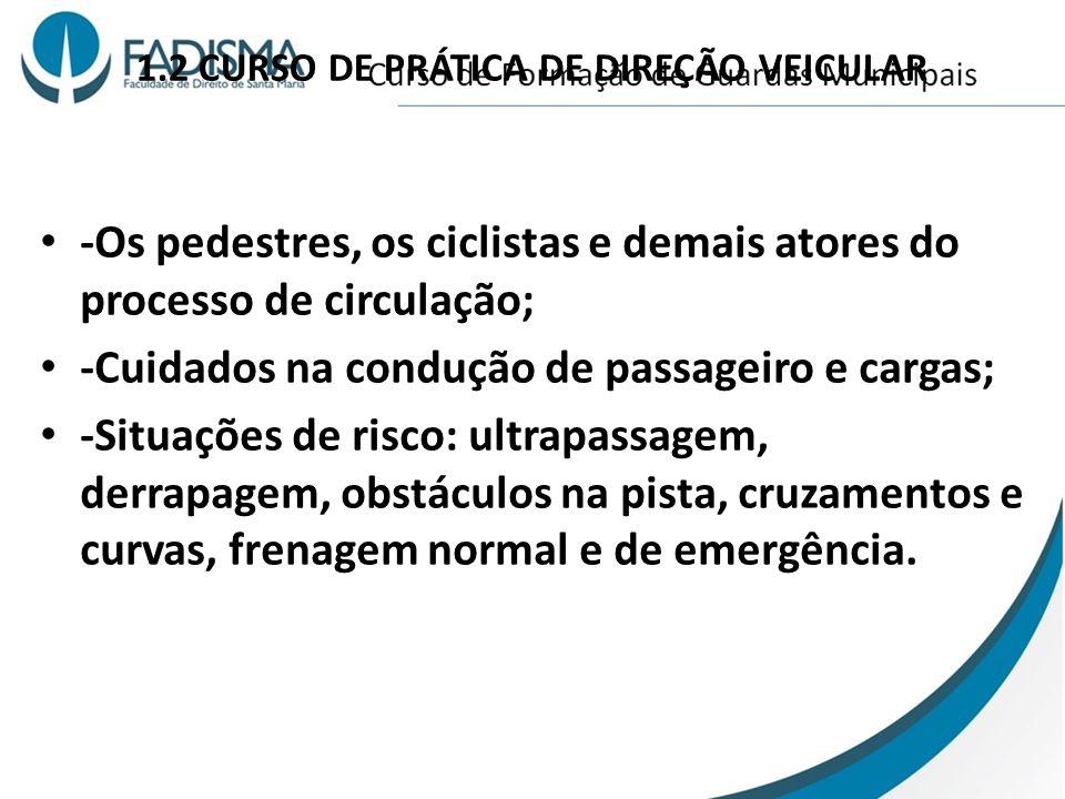 1.2 CURSO DE PRÁTICA DE DIREÇÃO VEICULAR