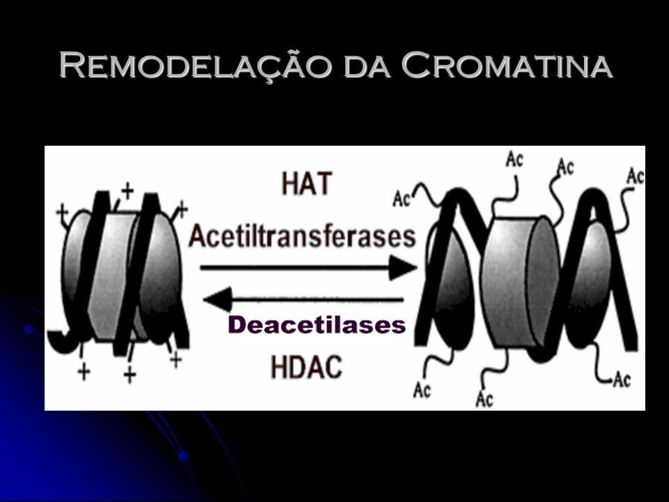 Remodelação da Cromatina