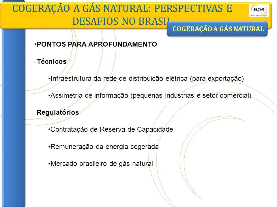 COGERAÇÃO A GÁS NATURAL