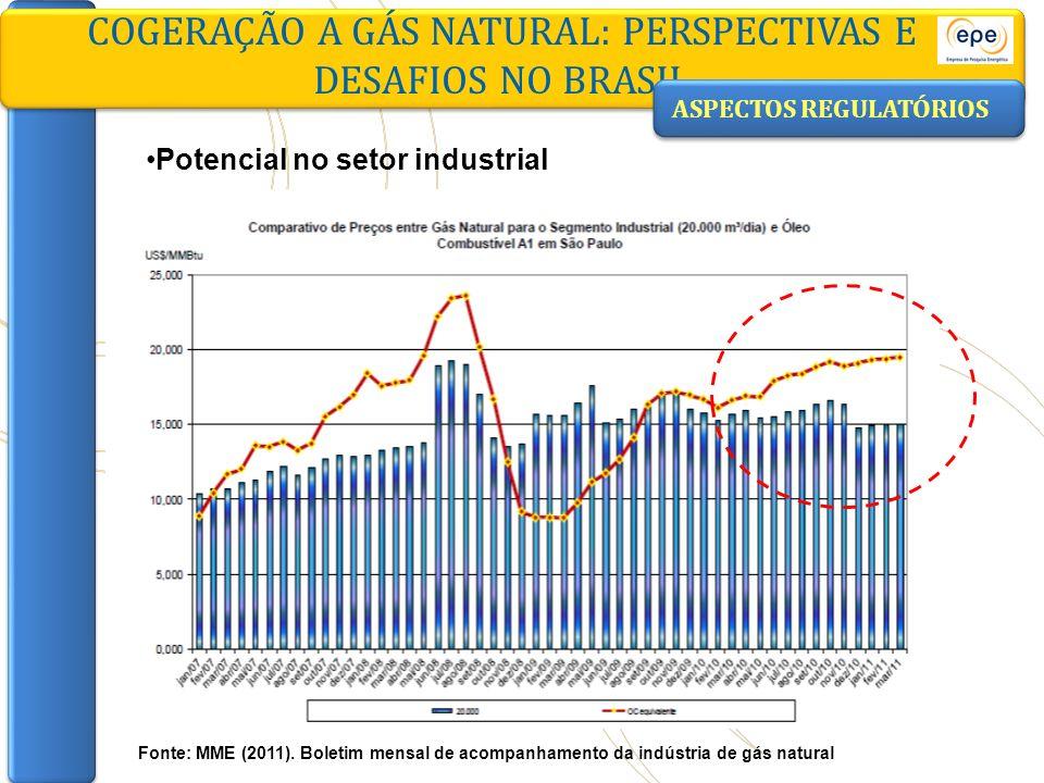 COGERAÇÃO A GÁS NATURAL: PERSPECTIVAS E DESAFIOS NO BRASIL