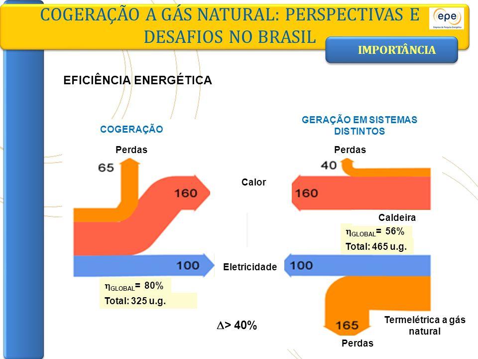 GERAÇÃO EM SISTEMAS DISTINTOS Termelétrica a gás natural