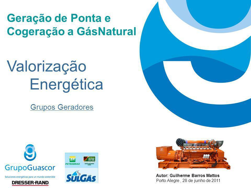 Valorização Energética Geração de Ponta e Cogeração a GásNatural