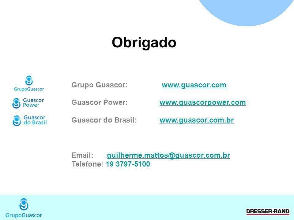 Obrigado Grupo Guascor: www.guascor.com
