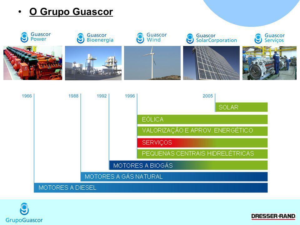 O Grupo Guascor 2