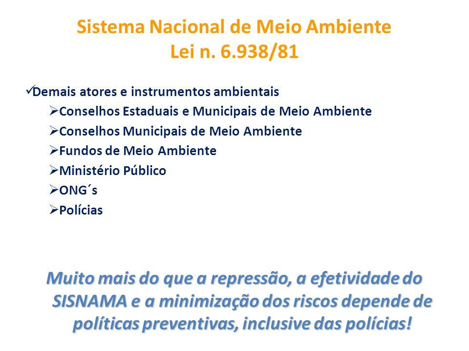 Sistema Nacional de Meio Ambiente Lei n. 6.938/81
