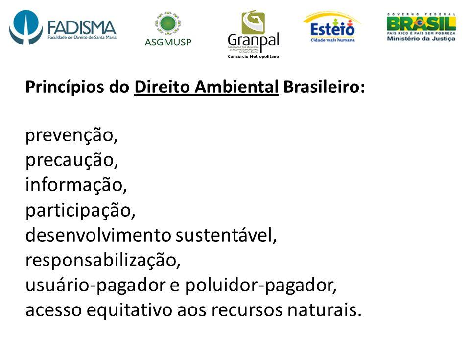 Princípios do Direito Ambiental Brasileiro: prevenção, precaução, informação, participação, desenvolvimento sustentável, responsabilização, usuário-pagador e poluidor-pagador, acesso equitativo aos recursos naturais.