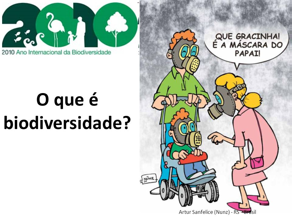 O que é biodiversidade Artur Sanfelice (Nunz) - RS - Brasil