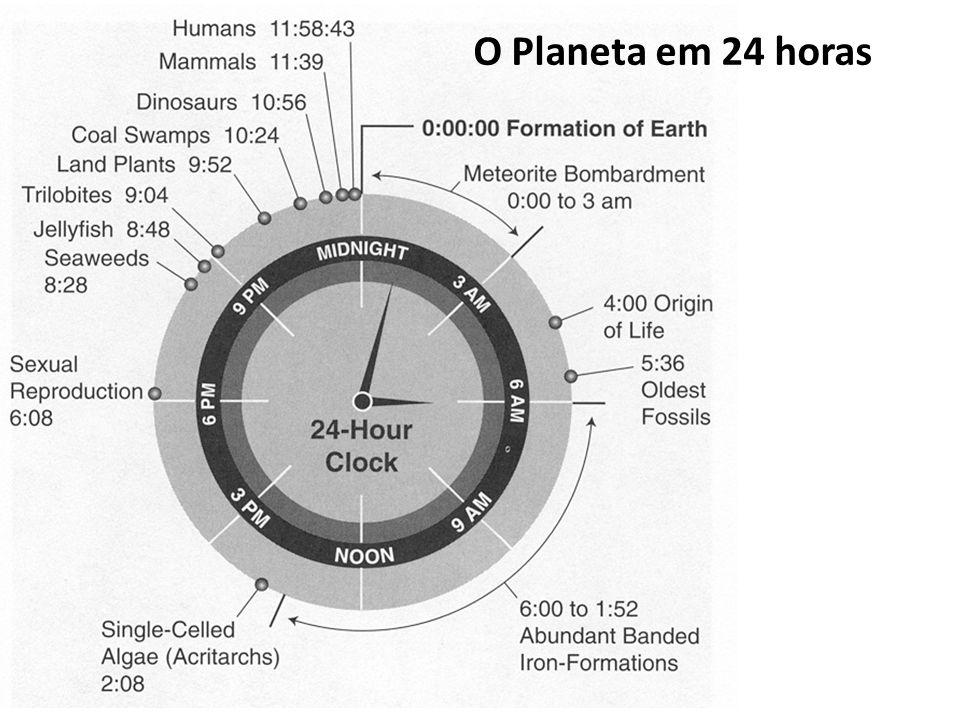 O Planeta em 24 horas