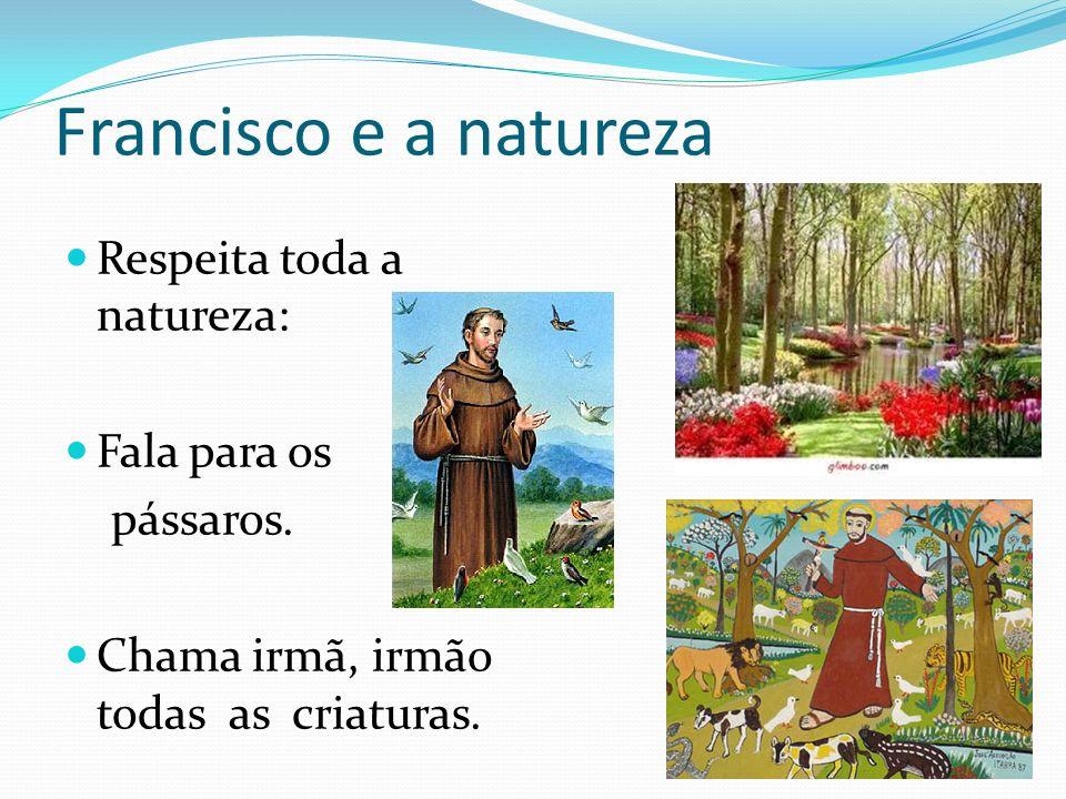 Francisco e a natureza Respeita toda a natureza: Fala para os