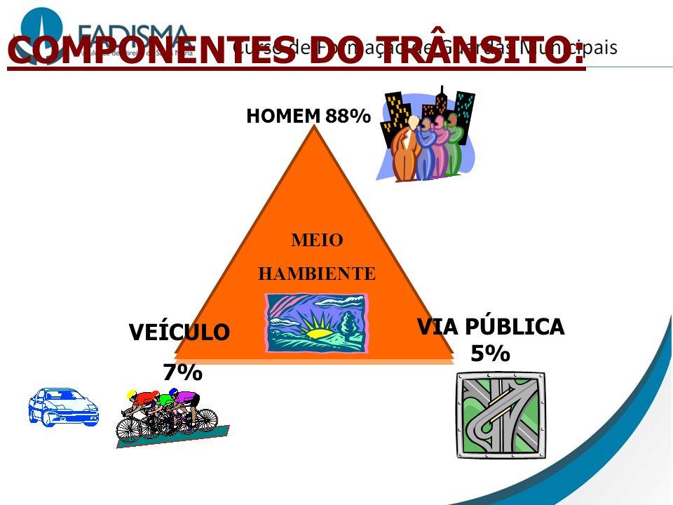 COMPONENTES DO TRÂNSITO: