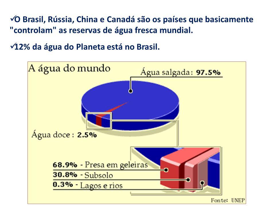 O Brasil, Rússia, China e Canadá são os países que basicamente controlam as reservas de água fresca mundial.