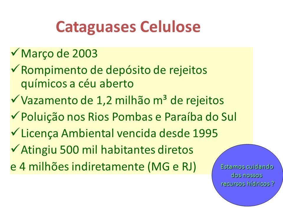 Cataguases Celulose Março de 2003