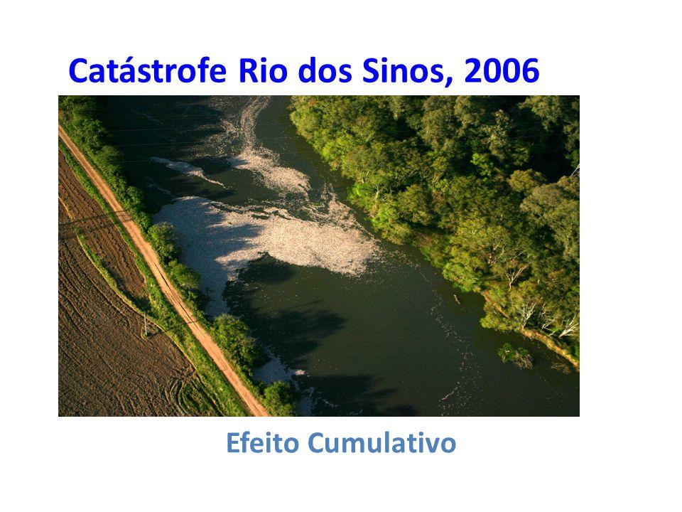 Catástrofe Rio dos Sinos, 2006