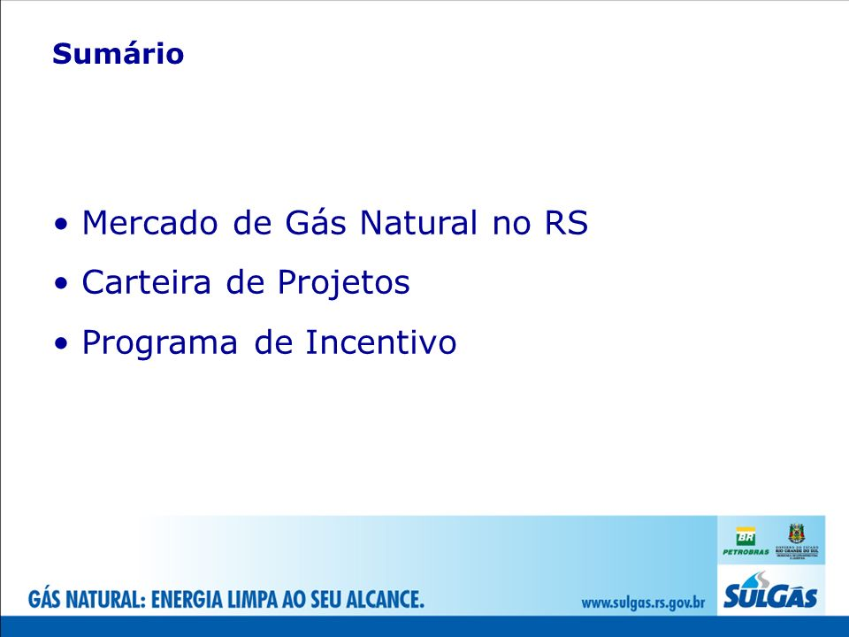 Mercado de Gás Natural no RS Carteira de Projetos